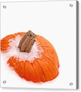 Pumpkin On Ice Acrylic Print