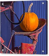 Pumpkin On Tractor Seat Acrylic Print