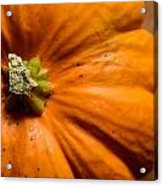 Pumpkin On Wooden Background Acrylic Print