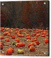 Pumpkin Season Acrylic Print