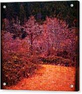 Pumpkin Spice Winter Acrylic Print