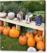 Pumpkins And Birdhouses Acrylic Print