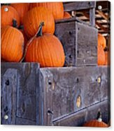 Pumpkins On The Wagon Acrylic Print by Kerri Mortenson