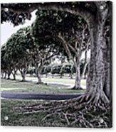 Punchbowl Cemetery - Hawaii Acrylic Print