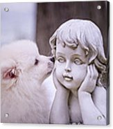Puppy And Angel  Acrylic Print