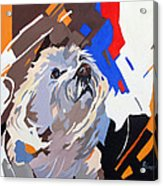 Puppy Design Acrylic Print
