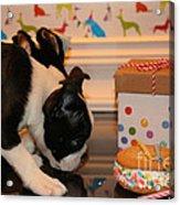 Puppy Party Acrylic Print