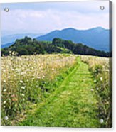 Purchase Knob Acrylic Print