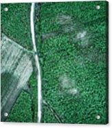 Pure Green Acrylic Print