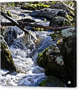 Pure Mountain Stream Acrylic Print