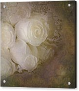 Pure Roses Acrylic Print