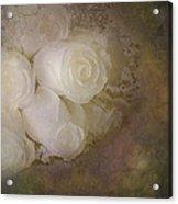 Pure Roses Acrylic Print by Susan Candelario