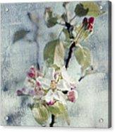 Pure Spring Acrylic Print