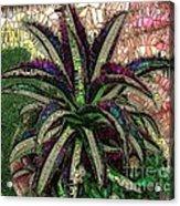 Purple Cactus II Acrylic Print
