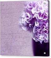 Purple Carnations Acrylic Print