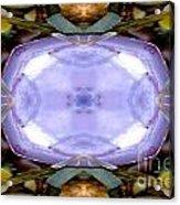 Purple Clam Shell Mandala Yantra Acrylic Print by Marie Jamieson