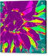 Purple Dahlia Pop Art Acrylic Print