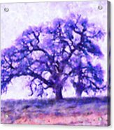 Purple Dreamtime Oak Tree Acrylic Print