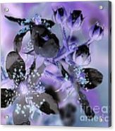 Purple Flower Abstract  2 Acrylic Print