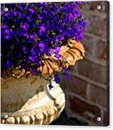 Purple Flowers Acrylic Print