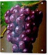 Purple Grapes On Terra Cotta Acrylic Print