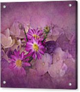 Purple Haze Acrylic Print