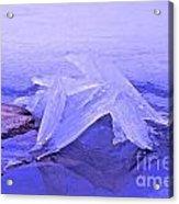 Purple Ice Acrylic Print