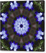 Purple Iris Kaleidoscope Acrylic Print
