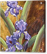 Purple Iris With Gold Leaf By Vic Mastis Acrylic Print