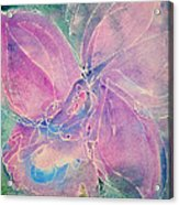 Purple Orchid Acrylic Print by M C Sturman
