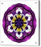 Purple Pansy II Flower Mandala White Acrylic Print