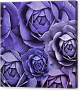 Purple Passion Rose Flower Abstract Acrylic Print