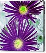 Purple Passion - Photopower 1604 Acrylic Print
