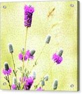 Purple Passion Texture Acrylic Print