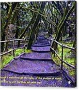 Purple Path Through The Valley Acrylic Print