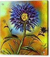 Purple Petals Acrylic Print