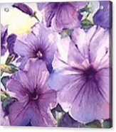 Purple Profusion Acrylic Print