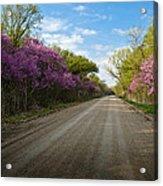 Purple Road Acrylic Print