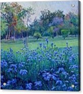 Purple Season Acrylic Print