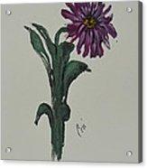 Purple Simplicity Acrylic Print