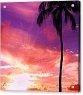 Purple Sky Acrylic Print