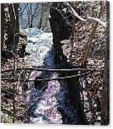 Purple Stream Acrylic Print