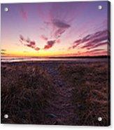 Purple Sunset Sky At The Beach Acrylic Print