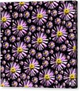Purplish And Daisy Like Acrylic Print