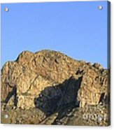 Pusch Ridge With Saguaro Acrylic Print