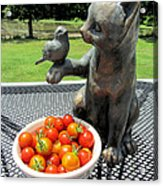 Pussycat And Tomatoes Acrylic Print