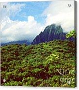 Puu Piei Trail Koolau Mountains Acrylic Print