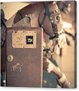 Quarter Horse Acrylic Print