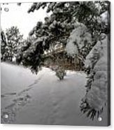Queen City Winter Wonderland After The Storm Series 0029 Acrylic Print
