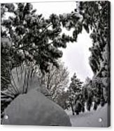 Queen City Winter Wonderland After The Storm Series 0031 Acrylic Print